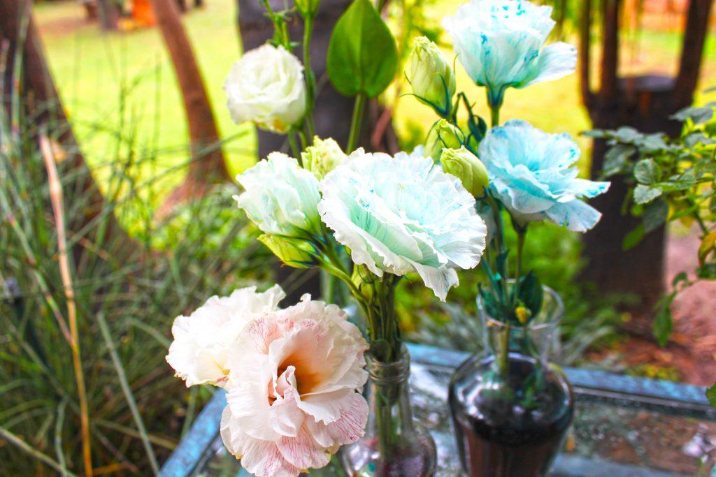 DIY Colour a bouquet experiment