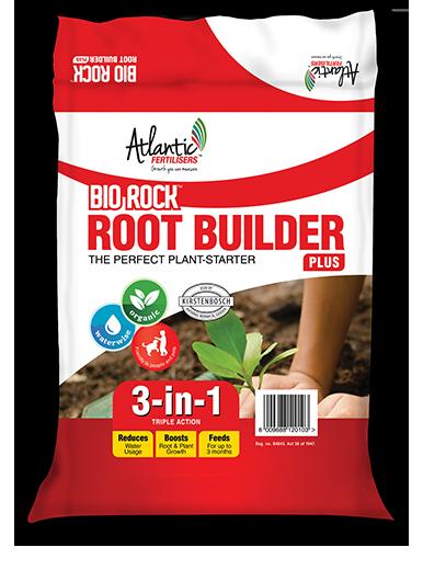 bio-rock-root-builder-package-png